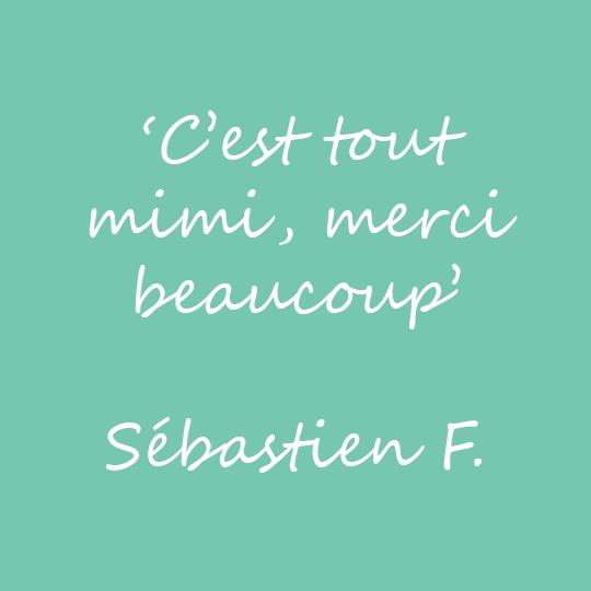 Commentaire-Sebastien